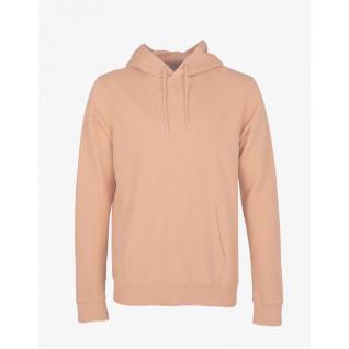 Sweatshirt Colorful Standard classic organic